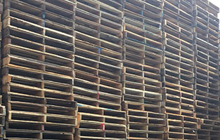 Recondition Pallets
